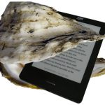 A photo of an oyster containing a Kobo eReader